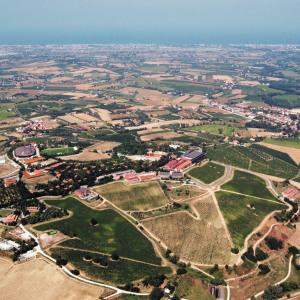 Field Trip Reggio Emilia e San Patrignano